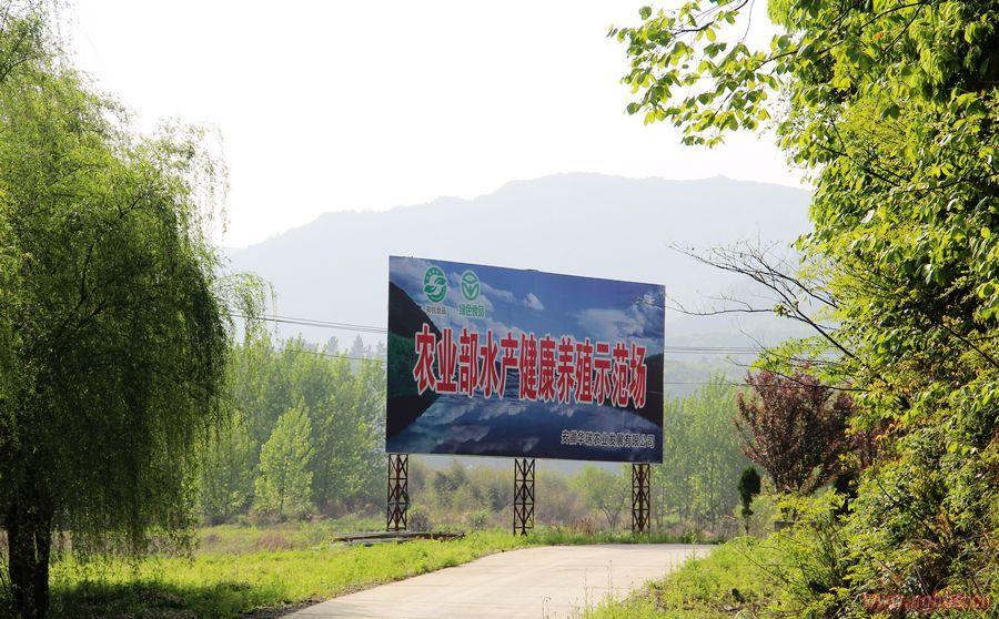 宁国华瑞公司甲路花林畈农林生态基地 - 宁国论坛 - 华瑞3.jpg