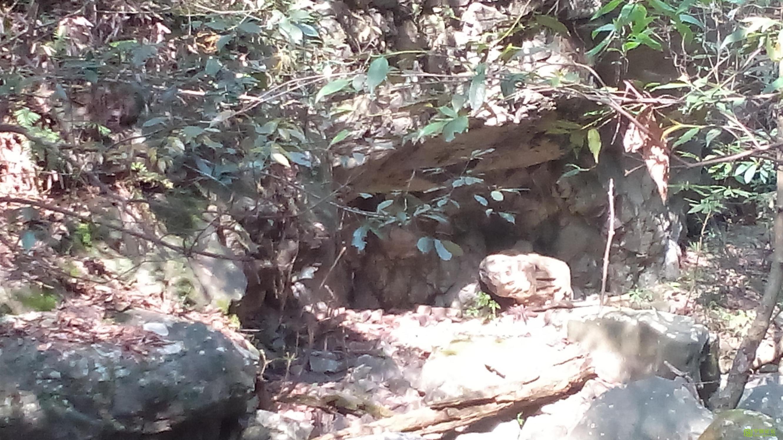 藏山韵水--高峰铁瓦寺 - 宁国论坛 - 图片4.jpg
