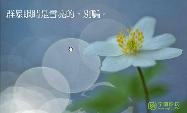 平衡人生 - 宁国论坛 - 214016ekfs0ommti6oni4i.jpg