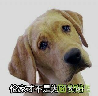 河沥溪五中队处理违章不快 - 宁国论坛 - 171840lpjhiqh6lp1paxzz.jpg