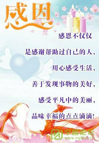 写给我的姐姐 - 宁国论坛 - 114912xiyalix5zzfrzixx.jpg