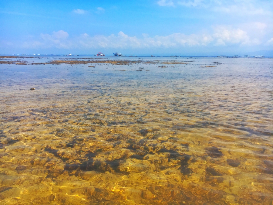巴厘岛——一边是结庐人境,一边是痛快淋漓 - 宁国论坛 - 6.jpg