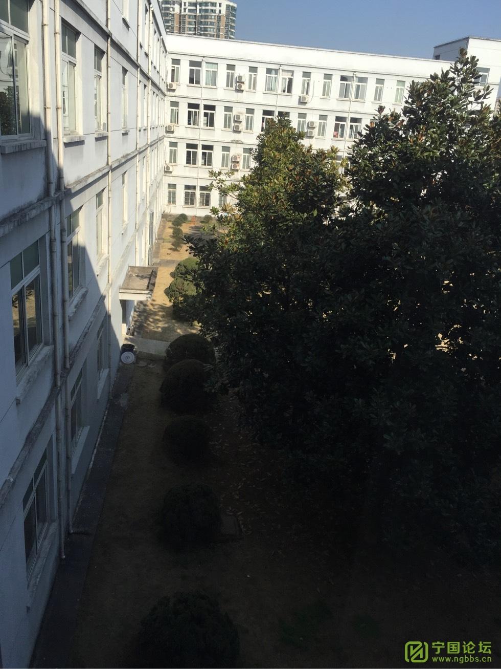 关于市医院西区停车收费的问题@市医院 - 宁国论坛 - 105815mr00eyd0zd1viiw0.jpg