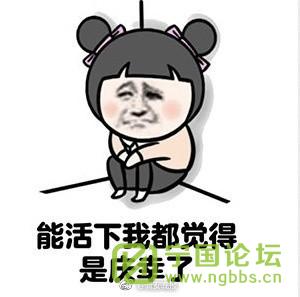 (道听图说第一百六十期)祝灌水兄弟姐妹新年快乐! - 宁国论坛 - 9.png