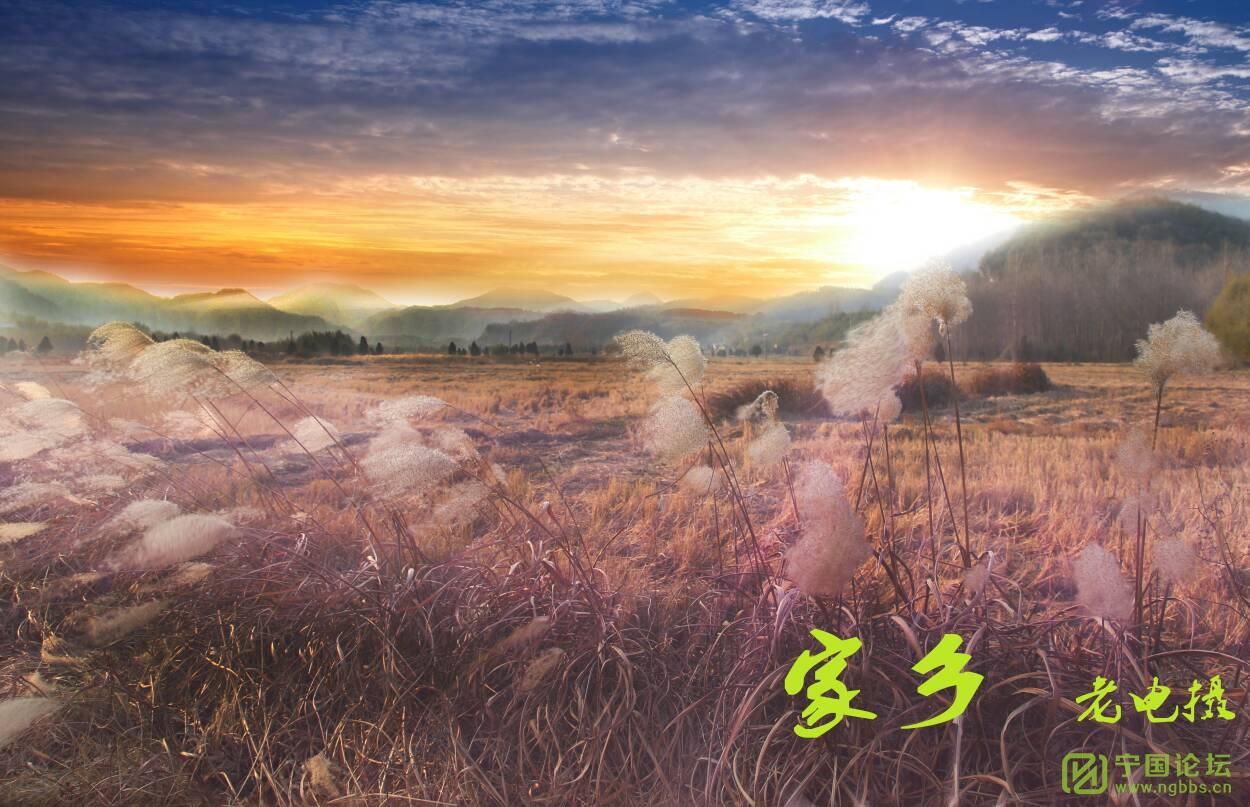 家乡虹龙+芜湖长江外拍 - 宁国论坛 - 151810jrctukkiufuk5cgb.jpg