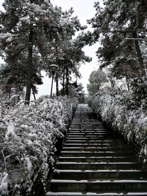 南山的冬天  宁国的美  不见了南方只见北 - 宁国论坛 - 微信图片_2019010209262314.jpg