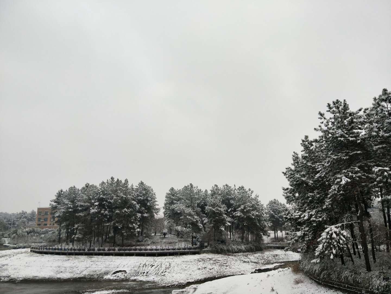 南山的冬天  宁国的美  不见了南方只见北 - 宁国论坛 - 微信图片_2019010209262320.jpg