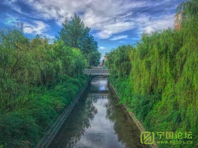 周一见:春雨惊绿起/总第245期 - 宁国论坛 - WechatIMG325.jpeg