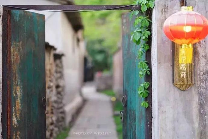 初夏京郊必去奇景,坡峰岭2000亩黄栌花开的漫山粉黛 - 宁国论坛 - 26.jpg