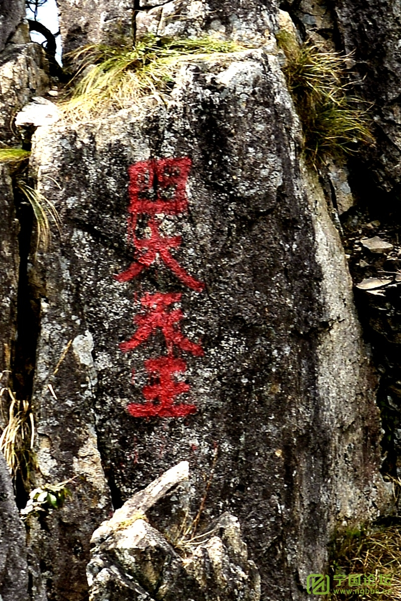 啊!南山脊 - 宁国论坛 - _DSC9361_副本.jpg