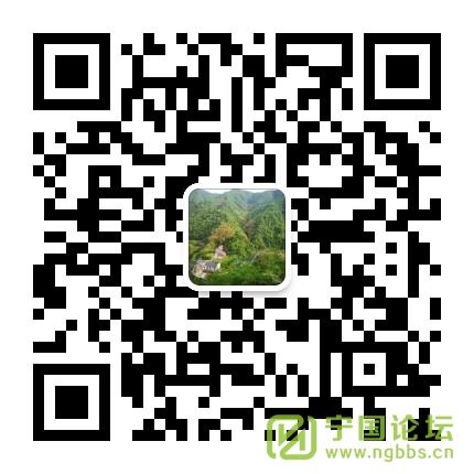 本地绿茶黄花云尖上市中,前提量少,需要的联系。(帖子每天跟新) - 宁国论坛 - 微信图片_20200326180024.jpg
