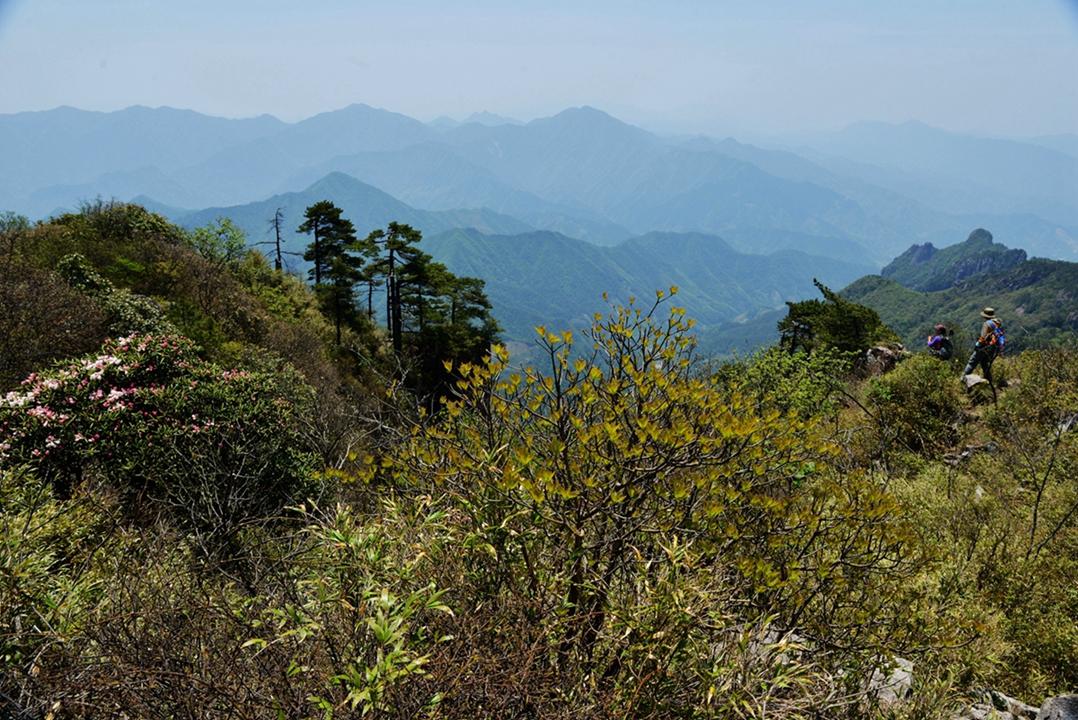 山在那 - 宁国论坛 - 压缩后照片095.jpg