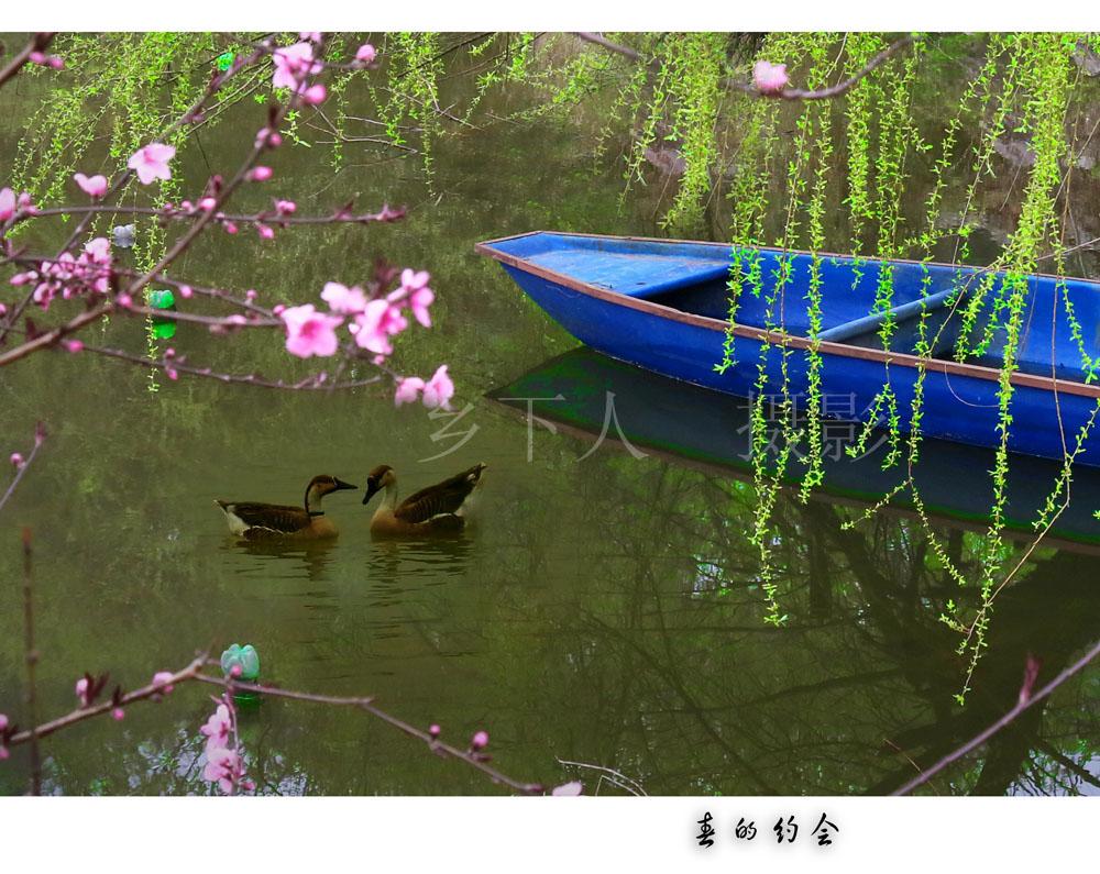 春的约会 - 宁国论坛 - IMG_09331.jpg