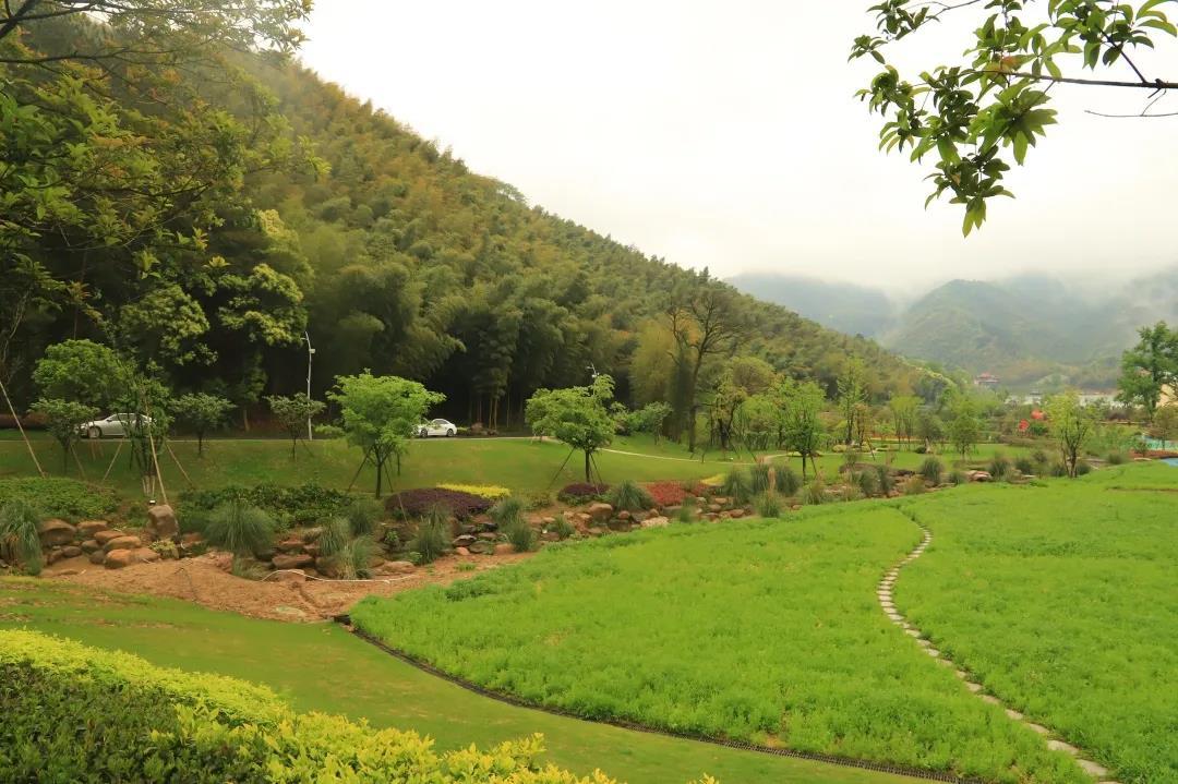 一周美景   是雨,也是韵 - 宁国论坛 - 微信图片_20200622085109.jpg
