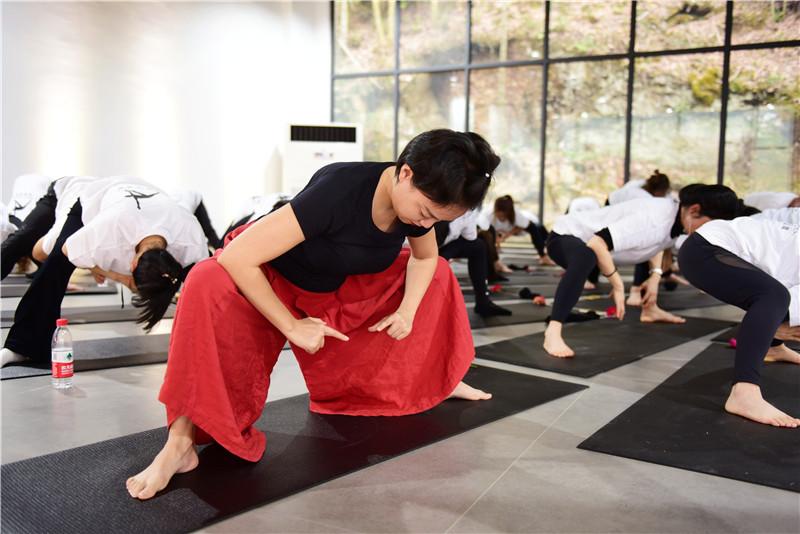 向往的生活 梵瑞瑜伽·真也天境回归于山水之间首届瑜伽艺术节圆满举行 - 宁国论坛 - DSC_4224.jpg