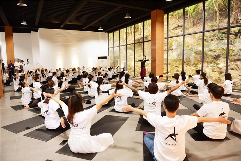 向往的生活 梵瑞瑜伽·真也天境回归于山水之间首届瑜伽艺术节圆满举行 - 宁国论坛 - DSC_4012.jpg