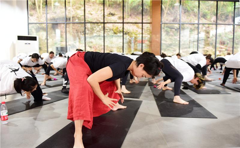 向往的生活 梵瑞瑜伽·真也天境回归于山水之间首届瑜伽艺术节圆满举行 - 宁国论坛 - DSC_4199.jpg