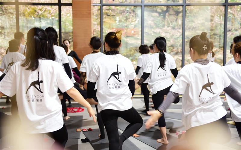 向往的生活 梵瑞瑜伽·真也天境回归于山水之间首届瑜伽艺术节圆满举行 - 宁国论坛 - DSC_4264.jpg